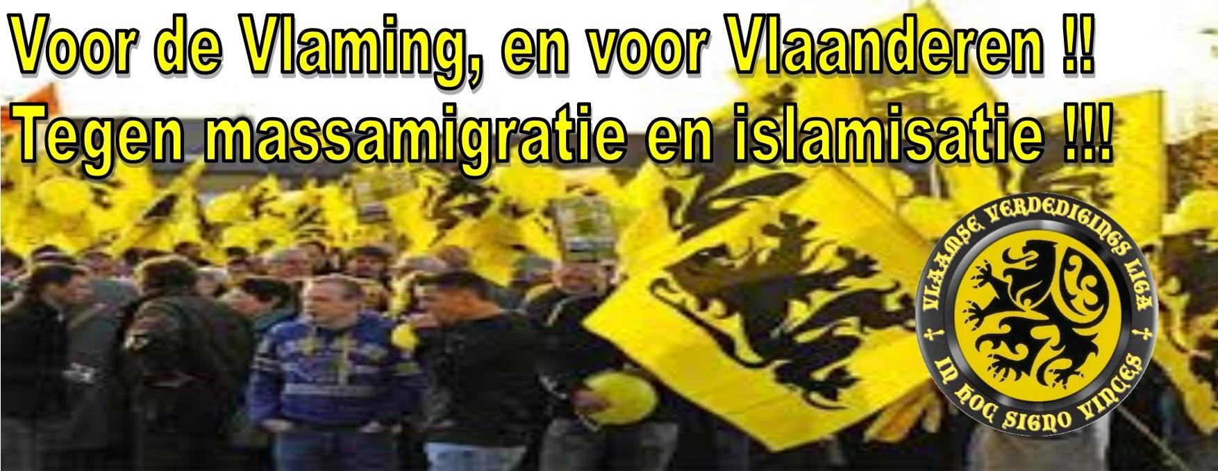 Vlaamse Vededigingsliga
